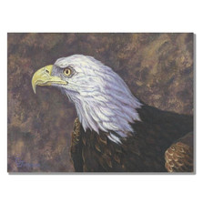 "Eagle Print ""Bald Eagle Portrait"" 
