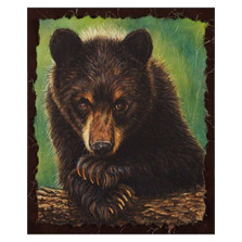"Black Bear Print ""The Curious One""   Gary Johnson   GJgccurone"