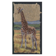 "Giraffe Print ""East African Matriarch""   Gary Johnson   GJgceafrmat"