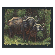 "Cape Buffalo Print ""Guardians of the Forest"" 