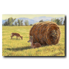"Deer Print ""Made in the Shade""   Gary Johnson   GJgcmits"