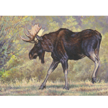 "Moose Print ""On The Move"" 