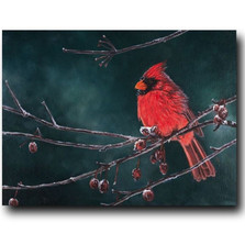 "Cardinal Print ""Snow Bird"" 