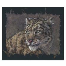 Snow Leopard Portrait Print | Gary Johnson | GJgcsnleoppor