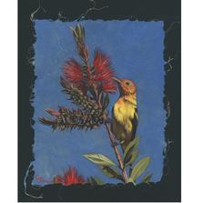 Western Tanager Print | Gary Johnson | GJgcwt