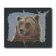 Grizzly Bear Portrait Print | Gary Johnson | GJgpgp