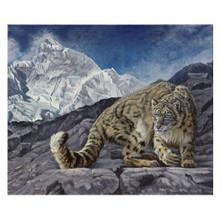 "Snow Leopard Print ""On Top of the World""   Gary Johnson   GJsnowworld"