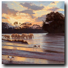 "Elephant Print ""Samburu Sunset"" 
