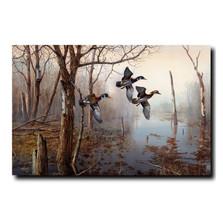 """Wood Duck Print """"Backwater""""   Jim Hansel   JHbackwater"""
