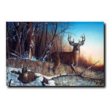 "Deer Print ""Resting Place"" 
