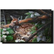 "Deer Print ""Undercover II"" | Kevin Daniel | KD001"