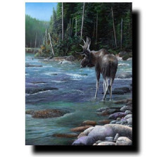 "Moose Print ""Northern Solitude"" 