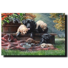 "Dog Print ""Cozy Moments"" 