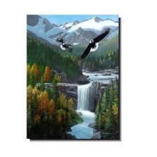 "Eagle Print ""Freedom Falls"" | Kevin Daniel | KD080"