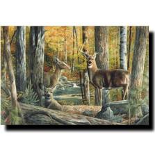 "Deer Print ""Broken Silence II"" | Kevin Daniel | KD117"