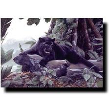 Black Panther Print | Kevin Daniel | KD120