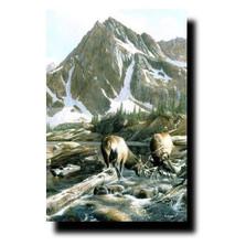 "Elk Print ""Mountain Challenge"" | Kevin Daniel | KD123"