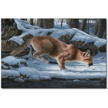 "Mountain Lion Print ""Out of the Shadows"" 