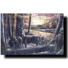 "Deer Print ""Autumn Harvest"" | Kevin Daniel | KD164"