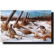 "Pheasant Print ""Daybreak"" | Kevin Daniel | KD177"