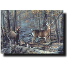 "Deer Print ""Broken Silence"" | Kevin Daniel | KD180"