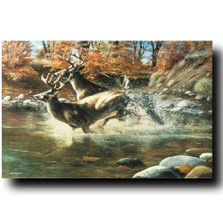 "Deer Print ""On The Run"" 