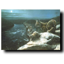 "Bobcat Print ""Nightwatch"" | Kevin Daniel | KD228"