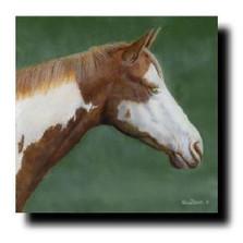 "Horse Print ""Paint"" | Kevin Daniel | KD256"