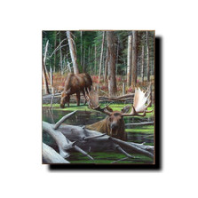 "Moose Print ""At River's Edge"" 