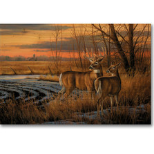 "Deer Wood Wall Art ""Daybreak"" | Wood Graphixs | WGIDB2416"