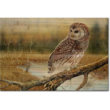 "Owl Wood Wall Art ""Early Hunter Owl"" 