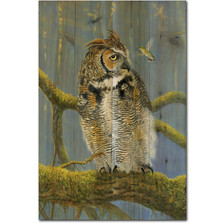 Owl and Hummer Wood Wall Art | Wood Graphixs | WGIFOAH1624