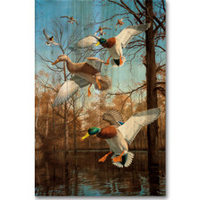"Mallard Wood Wall Art ""Greenhead Haven"" 