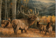 "Elk Wood Wall Art ""Meadow Music"" 