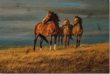 "Horse Wood Wall Art ""On Alert"" 