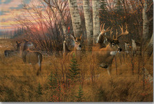 "Deer Wood Wall Art ""Play the Wind"" 