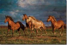 "Horse Wood Wall Art ""Racing the Sun""   Wood Graphixs   WGIRTS2416"