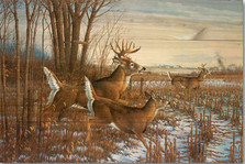 "Deer Wood Wall Art ""Season's End"" | Wood Graphixs | WGISEAE2416"