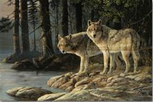 "Wolf Wood Wall Art ""Shades of Grey"" | Wood Graphixs | WGISOG2416"