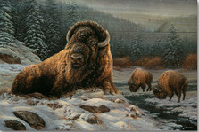 "Bison Wood Wall Art ""Spirit of the Wild"" 