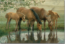 "Horses Wood Wall Art ""Sweet Spring"" 