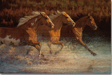 "Horse Wood Wall Art ""Thundering Water"" 