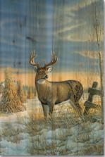 Whitetail Deer Winter Wood Wall Art | Wood Graphixs | WGIWTDW1624