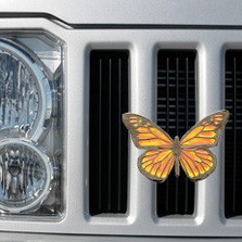 Butterfly Grille Ornament |Grillie | GRIbflyap -2