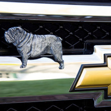 Bulldog Grille Ornament |Grillie | GRIbdogap -2