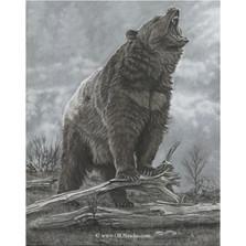 "Bear Print ""Last Stand"" | Gary Johnson | LSBEAR"