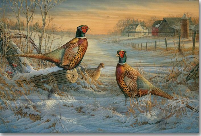 Pheasant Running Winter Snow Canvas Picture Wild Game Bird Wall Art Work Print