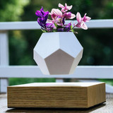 Levitating plant pot (FREE SHIPPING)