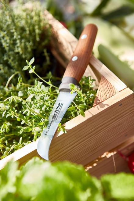 """Wusthof - 3"""" Urban Farmer Pruning Knife - 3400/08"""