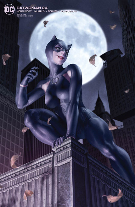 Catwoman #24 Cover B